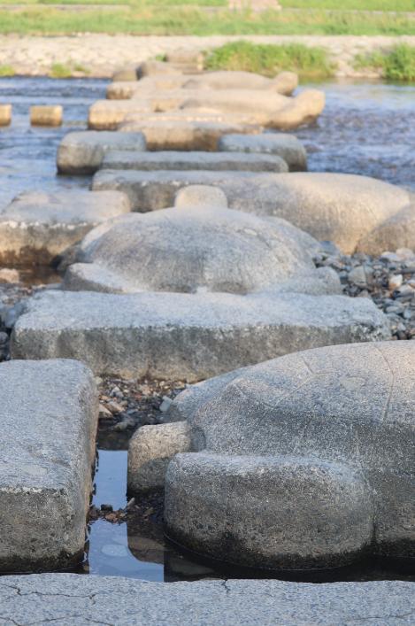 鴨川デルタのカメの飛び石